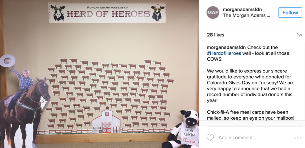 Instagram-Colorado-Gives-Day-Morgan-Adams-Foundation